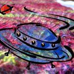 Wochen-Ufo [46]: Icicle - Zweifarbiges Patent