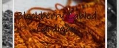 Blackberry Cabeld Cardigan